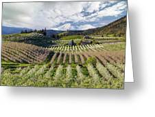 Hood River Pear Orchards On A Cloudy Day Greeting Card