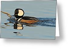 Hooded Merganser And Eel Greeting Card
