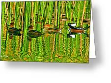 Hooded Merganser Family Greeting Card
