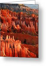 Hoodoos Of Sunset Point At Sunrise  In Bryce Canyon Greeting Card