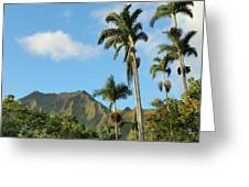 Ho'omaluhia Botanical Garden Greeting Card