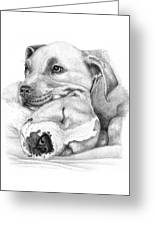 Hope And  Innocence Greeting Card by Deanna Maxwell