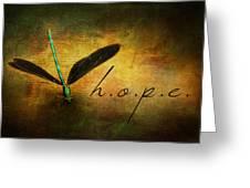 Hope Ebony Jewel Wing Damselfly On Golden Sunlight Dragonfly Greeting Card