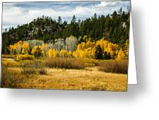 Hope Valley Greeting Card