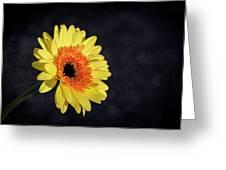 Hopes Greeting Card