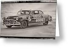 Hornet On Daytona Beach Greeting Card