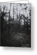Horror In The Woods Greeting Card