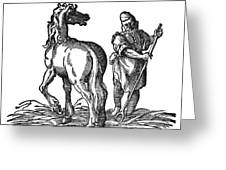 Horse & Groom Greeting Card