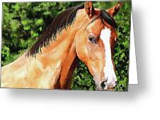 Horse 2 August 2016 Greeting Card