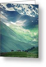 Horse Among The Mountains Of Georgia Greeting Card