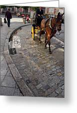 Horse And Carriage On Cobblestoned Alvarez Quintero Street In Th Greeting Card