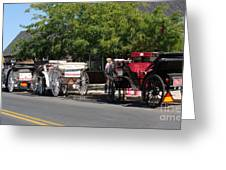Horse And Carriage Ride Greeting Card