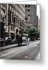 Horse And Chariot In Downtown Saint Louis Greeting Card