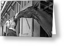 Horse And Man Greeting Card