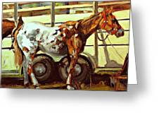 Horse And Trailer Greeting Card