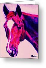 Horse Art Horse Portrait Maduro Deep Pink Greeting Card