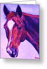 Horse Art Horse Portrait Maduro Pink And Purple Greeting Card