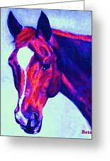 Horse Art Horse Portrait Maduro Psychedelic Greeting Card