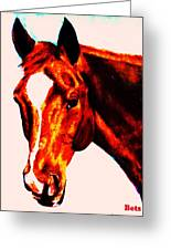 Horse Art Horse Portrait Maduro Red With Yellow Highlights Greeting Card