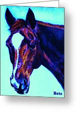 Horse Art Horse Portrait Maduro Striking Purple Greeting Card