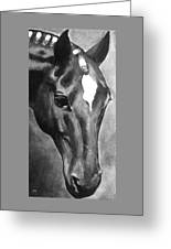 Horse Art Horse Portrait Red Black And White Greeting Card