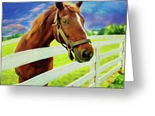 Horse By Nicholas Nixo Efthimiou Greeting Card