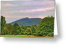 Horse Drawn Carriage At Muckross House Greeting Card