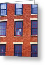 Horse In An Upstairs Window Greeting Card