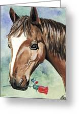 Horse In Love Greeting Card