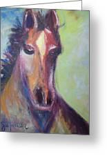 Horse Greeting Card by Jill Tennison