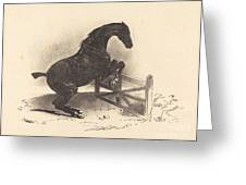 Horse Jumping A Barrier Greeting Card