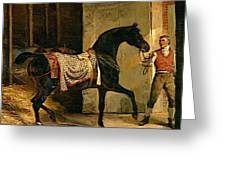 Horse Leaving A Stable Greeting Card