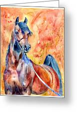 Horse On The Orange Background Greeting Card