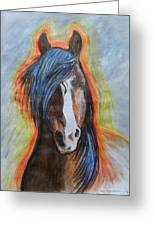 Horse Orange Greeting Card