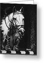 Horse Painting  Jumper No Faults Black And White Greeting Card