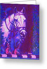 Horse Painting Jumper No Faults Purple And Blue Greeting Card