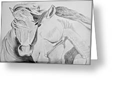 Horse Pair Greeting Card