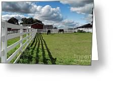Horse Pen Greeting Card