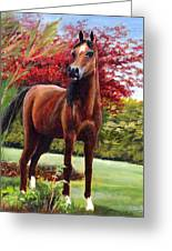 Horse Portrait Greeting Card by Eileen  Fong