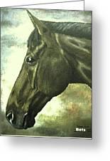 horse portrait PRINCETON bright light Greeting Card