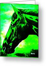 horse portrait PRINCETON green and black Greeting Card