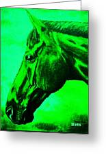 horse portrait PRINCETON green Greeting Card
