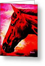 horse portrait PRINCETON red hot Greeting Card