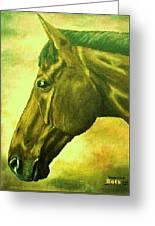 horse portrait PRINCETON soft colors Greeting Card