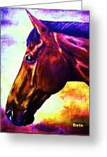 horse portrait PRINCETON wow purples Greeting Card
