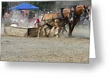 Horse Pull - Team A Greeting Card