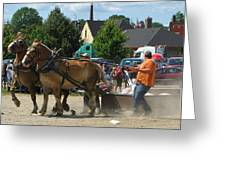 Horse Pull 2 Greeting Card