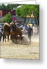 Horse Pull 2009 Greeting Card