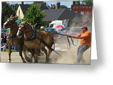 Horse Pull 3 Greeting Card
