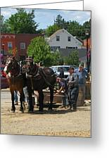 Horse Pull H Greeting Card